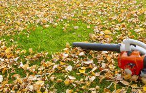 Guide d'achat souffleur feuilles